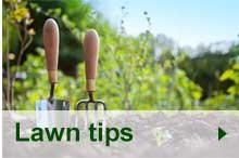 Lawn Tips